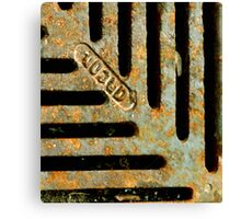 Rusted Canvas Print