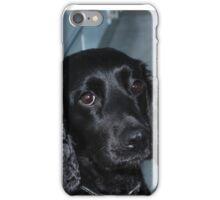 roxy the dog iPhone Case/Skin