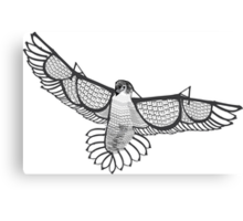 Peregrine Falcon Typography Canvas Print