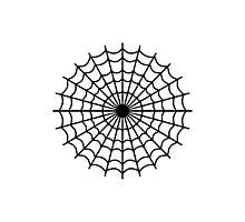 Spider spiderweb Photographic Print