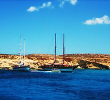 Comino Island by Suzanne German