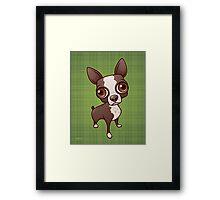 Zippy the Boston Terrier Framed Print