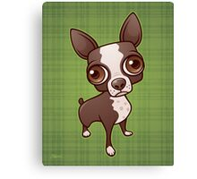 Zippy the Boston Terrier Canvas Print