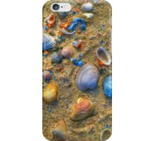 Seashells Aglow iPhone Case/Skin