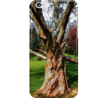 Twisting To Nature's Tune iPhone Case/Skin