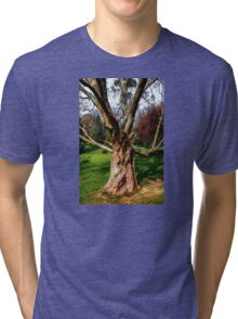 Twisting To Nature's Tune Tri-blend T-Shirt