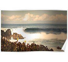 Monterey Waves Poster