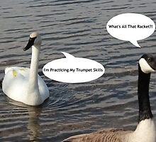 Trumpeter Swan And Canada Goose - Funny by jartcreations