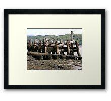 wood and Seaweed Framed Print