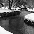 Winter Winding Brook by TerrieK