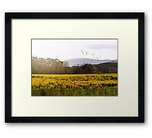 Waves of Golden Light Framed Print