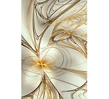 Silver & Gold Photographic Print