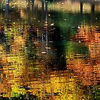 Autumn Waters by Sandy Woolard