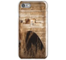 Photographers Shooting Photographers iPhone Case/Skin