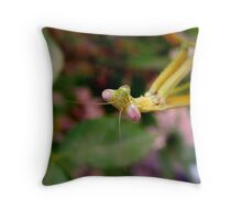 Green Mantid ... with shades of Pink Throw Pillow