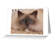 Hypnotize Greeting Card