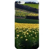 A Host of Golden Daffodils.... iPhone Case/Skin