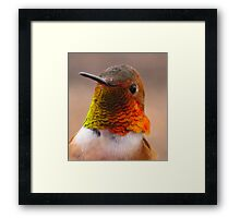 Rufus The Red Framed Print