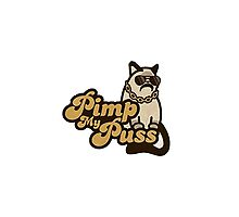 Pimp my puss by Skrajtan
