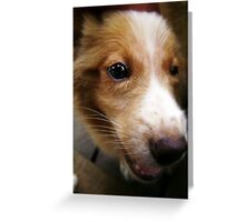 "Look in through ""my eye"" Greeting Card"