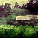 Spirits Dance Upon A Sleeping Field by Anne  McGinn