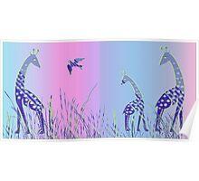 Giraffe and Bird - Panoramic Poster