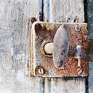 Frozen door by Olav Lunde