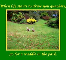 Go for a Waddle by Eleanor Wylie