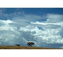 australian landscape Photographic Print