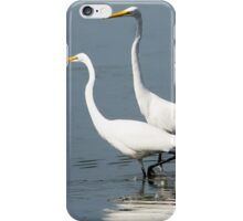 Tango for Two iPhone Case/Skin