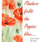 In Flanders Fields...... by Stephie Butler