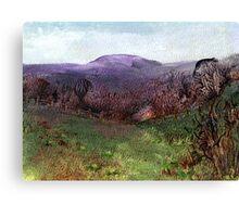 Moorland View 3 Canvas Print