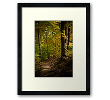 The Light Shows The Way Framed Print