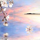 Serenity by Christina Brundage