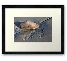 Tidal Stream Framed Print