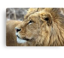 Profile Of A King Canvas Print