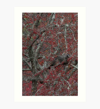 Turkey Tree Art Print