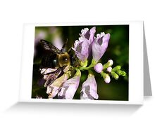 Dont Worry BEE Happy Greeting Card