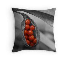 Berry Burst Throw Pillow