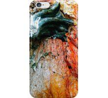 Rotting Pumpkin  iPhone Case/Skin