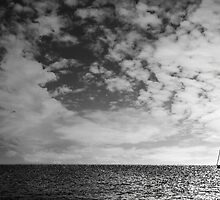 Sailing the distance  by mattjonezu