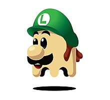 Ghost Luigi Photographic Print