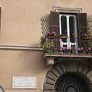 Piazza Navona, Rome by angelfruit
