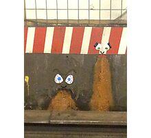 subway barf Photographic Print