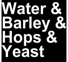 Beer - Ingredients - Water, Barley, Hops, Yeast Photographic Print