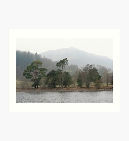 Lake land trees Art Print