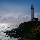 Pigeon Point Lighthouse by MattGranz