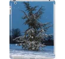 Fir Tree and snow iPad Case/Skin