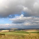 Patchwork Panorama by mikebov
