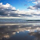 Reflections by Patricia Gibson